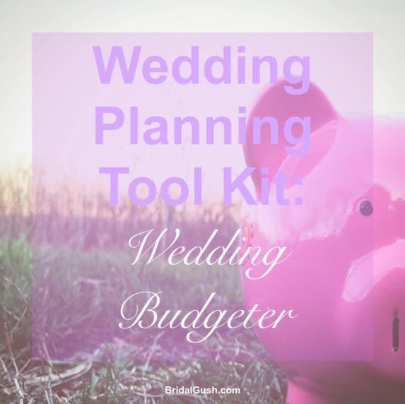wedding planning tool kit wedding budgeter